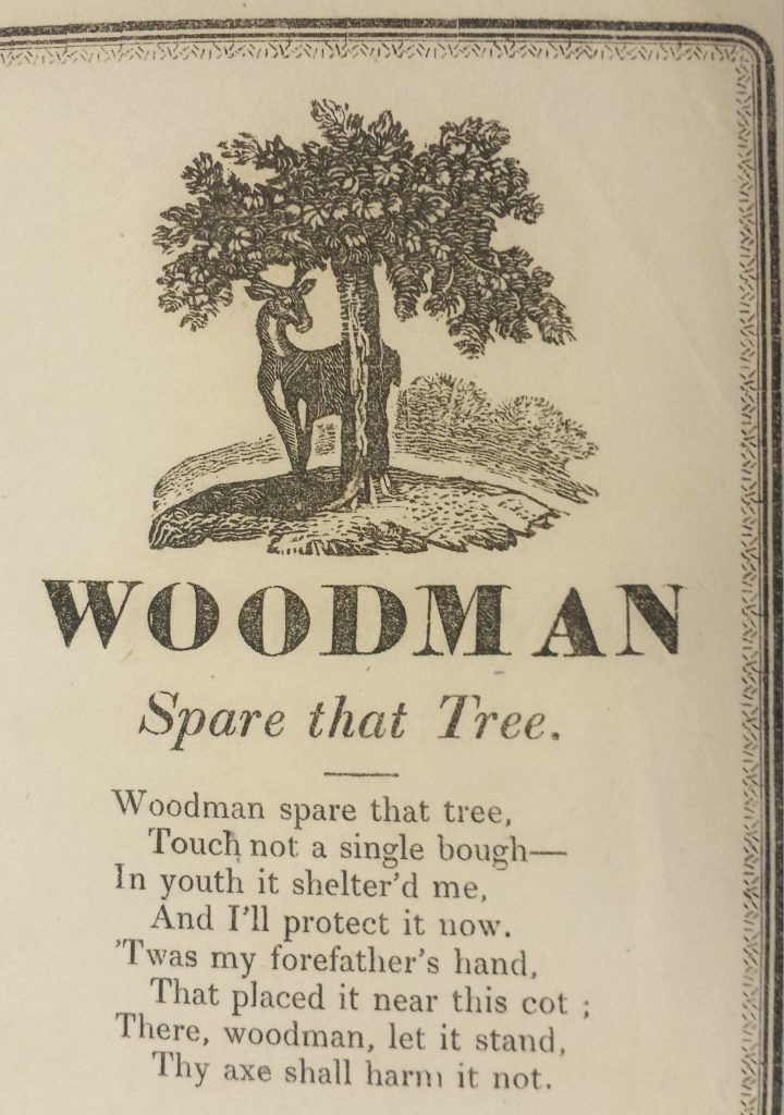 Woodman, spare that tree!