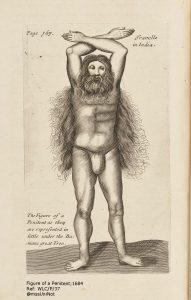 """Illustration of a long haired, bearded faquir [faqir] holding his arms above his head as posing for a penance. The caption reads, """"The Figure of a Penitent as they are represented in little under the Banians great Tree"""".<br /> From: Collections of travels through Turky into Persia, and the East-Indies : being the travels of Monsieur Tavernier Bernier, and other great men. London : Printed for Moses Pitt at the Angel in St. Pauls Church-yard, 1684. Section: """"The six travels of John Baptista Tavernier, Baron of Aubonne, through Turky and Persia to the Indies"""", plate facing p.167."""