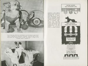 Photograph and diagram of dogs sent into space during the Soviet space programme. From the pamphlet Soviet Sputniks, 1958