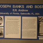 Display material from poster paper 'Sir Joseph Banks and Boston'; 1993