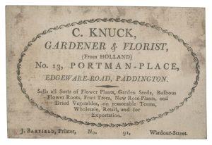 Printed card for C Knuck, Gardner and Florist, Paddington