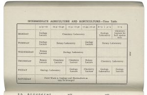 Printed weekly timetable for lectures and lab classes in different subjects