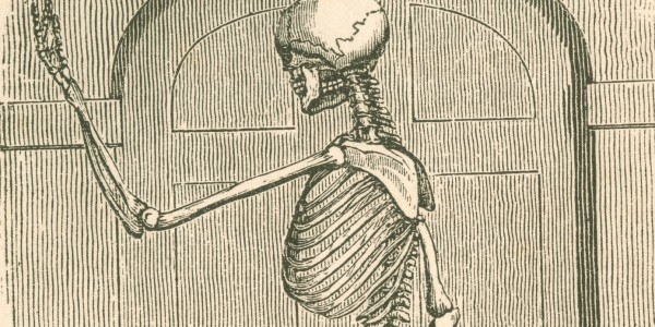 Engraving of a skeleton, from 'The house I live in', 1849.