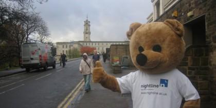 Nightline_bear