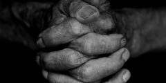 The clenched . prayer and hope concept