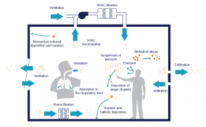 Figure shows impact of ventilation on transmission of infected particles indoors