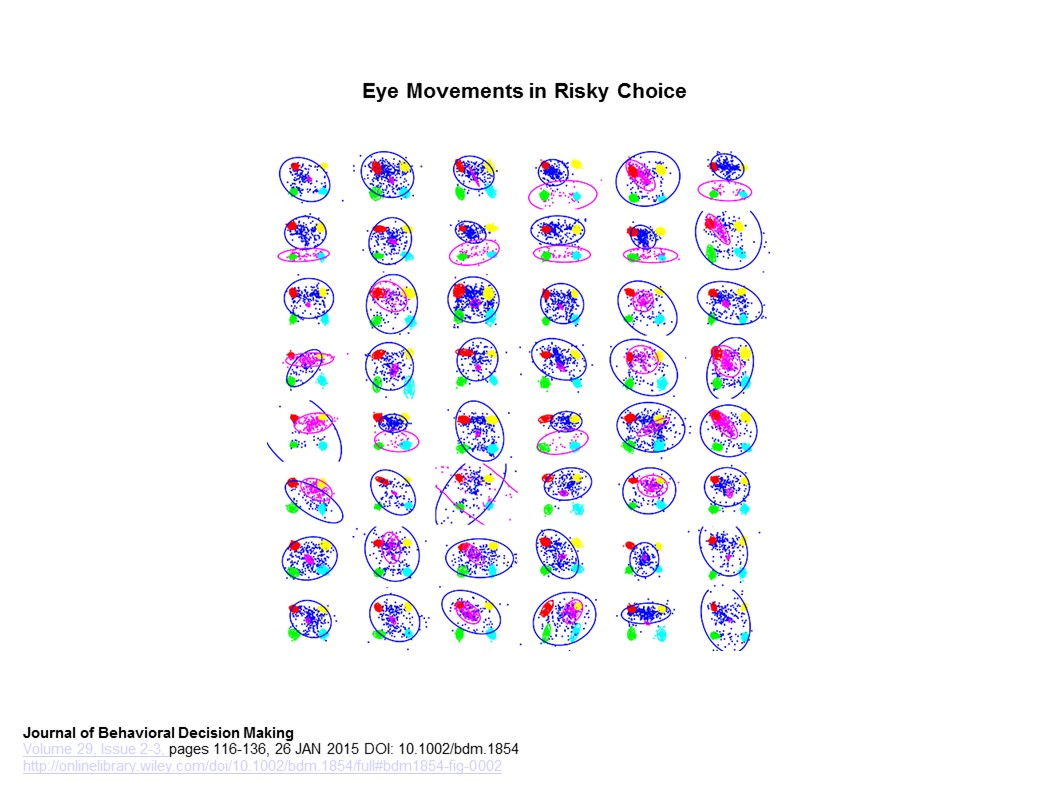 Eye Movements in Risky Choice Fig 2.0