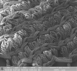 SEM image of fine bridal lace4