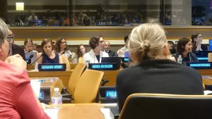 Dr Andrea Nicholson at the United Nations