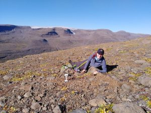 Laura Turner collecting samples from the mountainside in Greenland
