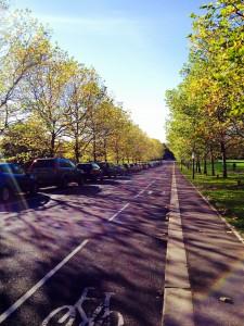 jubilee avenue