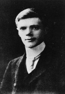dh lawrence critical essays Published: mon, 5 dec 2016 the novel , the rainbow by dh lawrence , formerly known as the wedding ring, traces the history of three generations of the brangwen's, a vigorous farming family, living on the marsh farm in derbyshire in south england (lawrence 15.