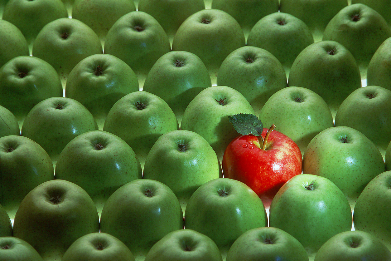 Spruce up your CV - A lone red apple in a crowd of green apples