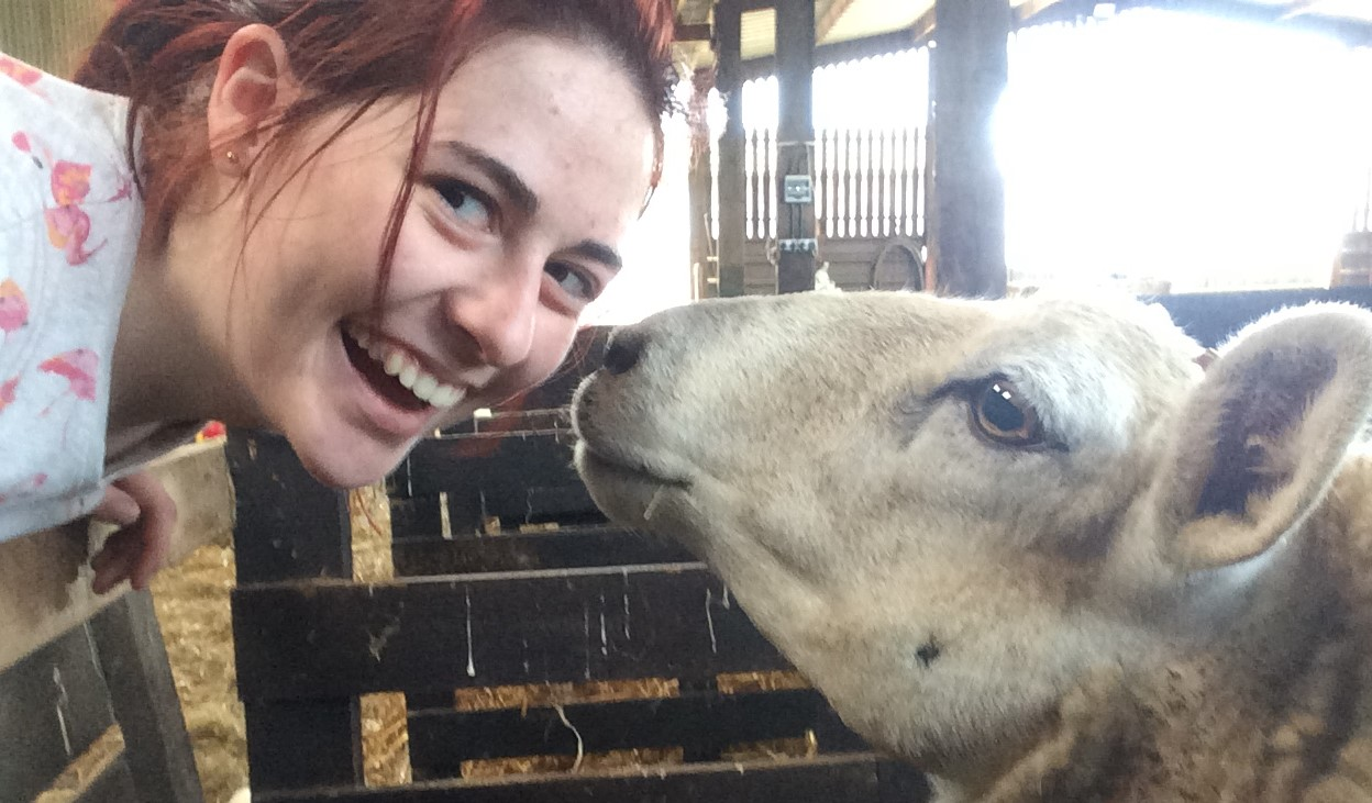 A Day in the life - a vet student grins at the camera as a sheep sniffs her face