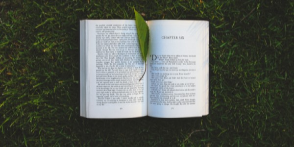 Open book on grass with a leaf on top of it