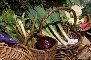 Rhubarb and leeks for sale at the farmers' market
