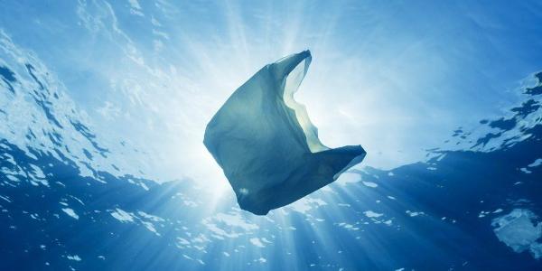 Plastic bag in ocean water