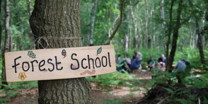 forest_school_2_roydon_wood_fair_2013_by_nat_light_17