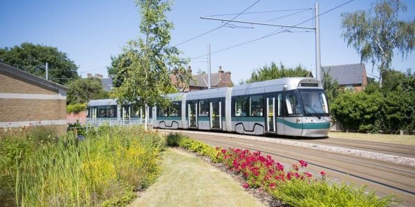 Tram next to Djanogly pond