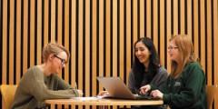 The School of English report on TESTA Audit