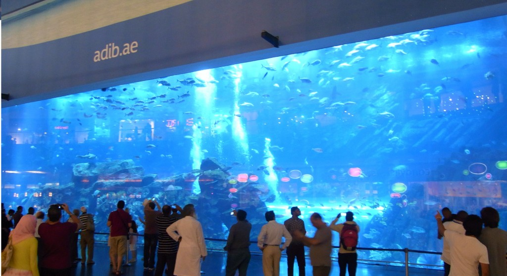 Ok, an acrylic panel doesn't really sound that exciting however large so I wanted to show you this one.  It's one of the viewing screens of the aquarium housing sharks, rays and many other fish.  Sound a bit cooler now?