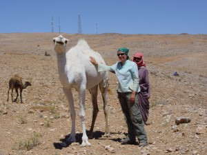 Fieldwork in Jordan, 2008