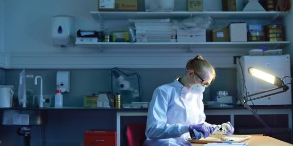 Sampling in Laboratory