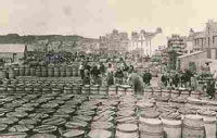 Photograph of fish workers packing herring, c.1910.