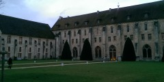 Royaumont Foundation