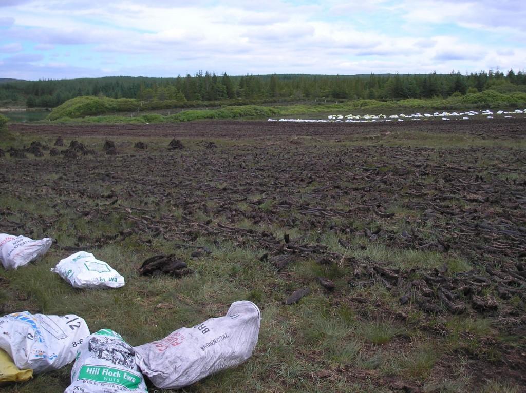 Peat harvesting on blanket bog, 2009. Photo by Angela Byrne.