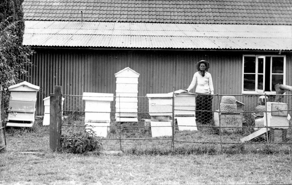Alice Allen with bee hives and skeps, West Bradley, Somerset, c. 1920s. Photo courtesy of David Charles.