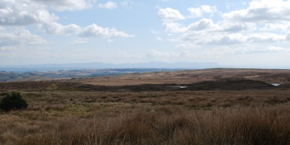 Typical mountain blanket bog, Donegal, 2010. Photo by Angela Byrne.