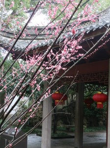 Gardens at the Tyanyi Chamber