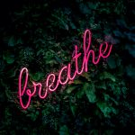 A pink neon sign reading breathe in a hedge.